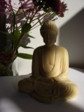 Mindfulness Classes in Guildford Surrey